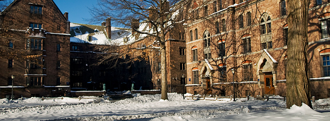Just a 5-minute walk to Yale University Campuses!